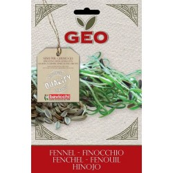 Finocchio - Buste semi Bio-Organic