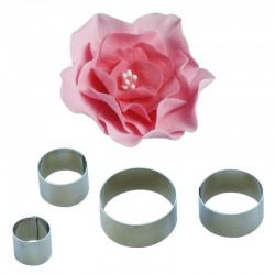 Petali rosa rubiginosa tagliapasta inox - 4 pz