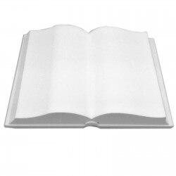 Libro aperto in polistirene espanso per cake design cm 30 x 40
