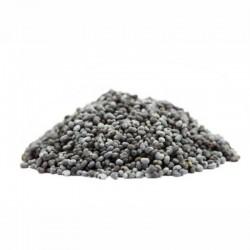 Semi di papavero blu Alaska- 100 gr