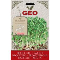 Cavolo Broccolo  - Buste semi Bio-Organic